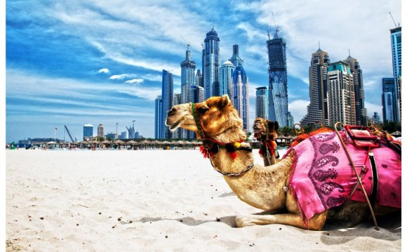 Путешествие в Дубаи на 9 ночей